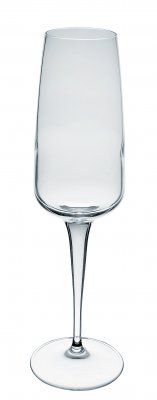 Aurum champagne glass